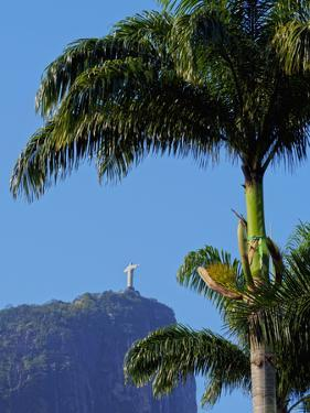 Corcovado and Christ statue viewed through the palm trees of the Botanical Garden, Zona Sul, Rio de by Karol Kozlowski