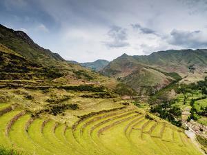 Inca Terraces, Pisac, Sacred Valley, Cusco Region, Peru, South America by Karol Kozlowski