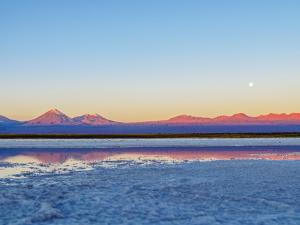 Laguna Baltinache at sunset, Salar de Atacama, Antofagasta Region, Chile, South America by Karol Kozlowski