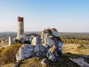 Olsztyn Castle Ruins, Trail of the Eagles' Nests, Krakow-Czestochowa Upland (Polish Jura), Poland by Karol Kozlowski