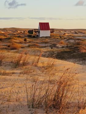 Sunrise at dunes, Cabo Polonio, Rocha Department, Uruguay, South America by Karol Kozlowski