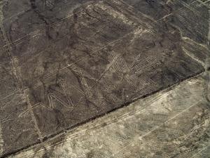 The Heron Geoglyph, aerial view, Nazca, UNESCO World Heritage Site, Ica Region, Peru, South America by Karol Kozlowski