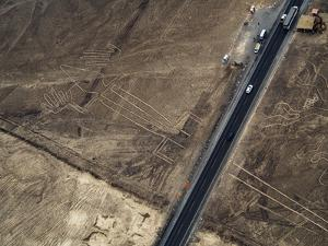 The Lizard Geoglyph, aerial view, Nazca, UNESCO World Heritage Site, Ica Region, Peru, South Americ by Karol Kozlowski
