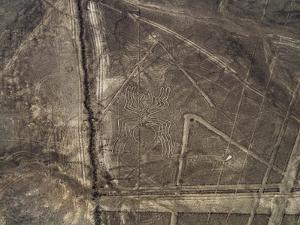 The Spider Geoglyph, aerial view, Nazca, UNESCO World Heritage Site, Ica Region, Peru, South Americ by Karol Kozlowski