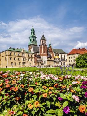 Wawel Cathedral, Cracow (Krakow), Lesser Poland Voivodeship, Poland by Karol Kozlowski