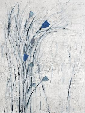 Wild Flower Frolic by Karolina Susslandova