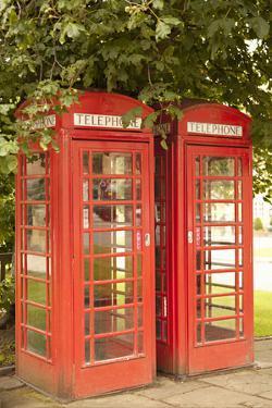 London Calling I by Karyn Millet