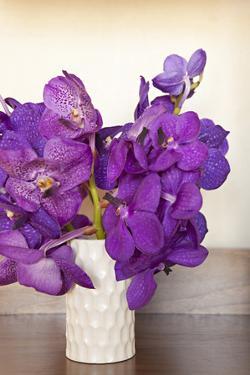 Orchid Bouquet by Karyn Millet
