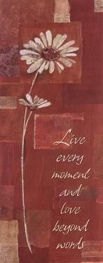 Love Beyond Words by Kate and Liz Pope