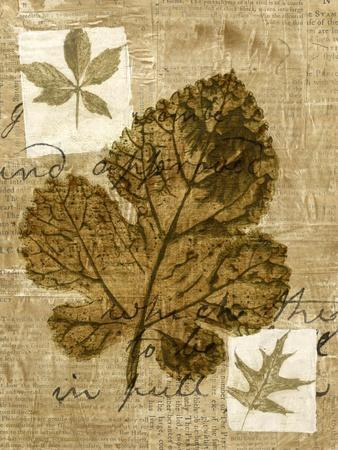 Leaf Collage IV