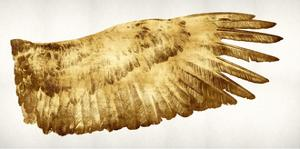 Golden Wing II by Kate Bennett