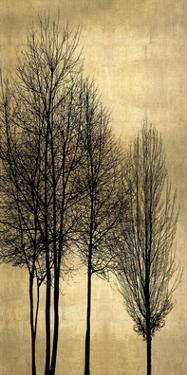 Tree Silhutette on Gold I by Kate Bennett