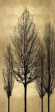 Tree Silhutette on Gold II by Kate Bennett