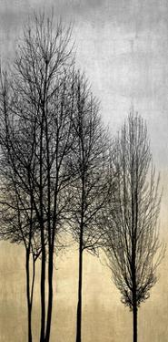 Trees on Silver & Gold I by Kate Bennett