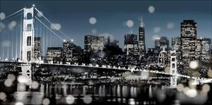 The City-San Francisco by Kate Carrigan