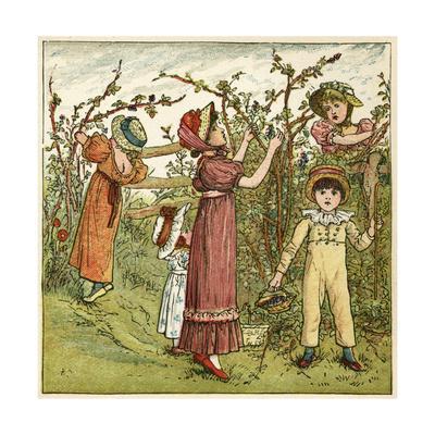 Five Children Picking Blackberries