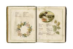 Flowers and People 1884 by Kate Greenaway