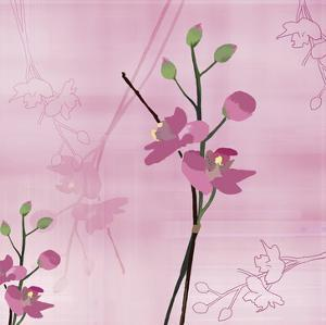 Zen Blossoms 3 by Kate Knight
