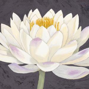 Moon Lily II by Kate Mawdsley