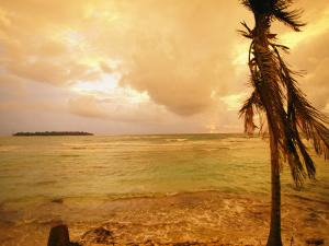 A Tropical Beach Scene with an Island in the Background by Kate Thompson
