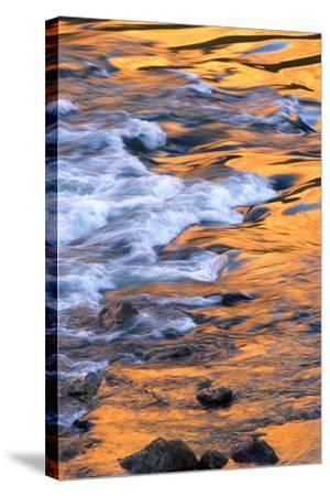 Scenic of Moving Water Reflecting Sunlit Canyon Walls, Colorado