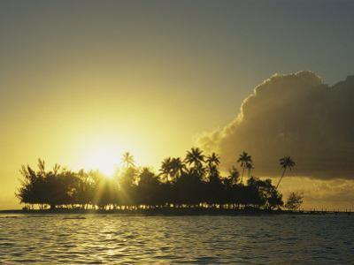 Small Silhouetted Island with Palm Trees at Twilight