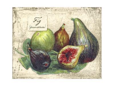 Fresco Fruit XI
