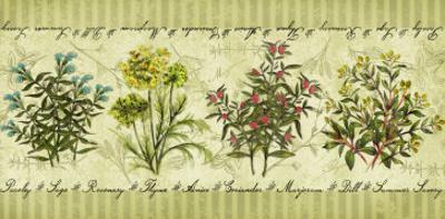 Herb Garden by Kate Ward Thacker