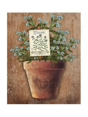 Potted Herbs I by Kate Ward Thacker