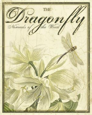 The Dance of Dragonfly II by Kate Ward Thacker