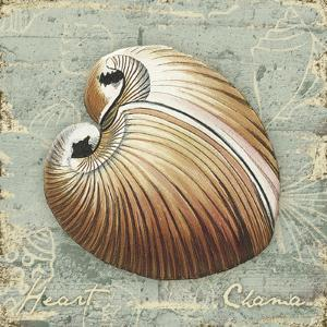 Weathered Shells IV by Kate Ward Thacker