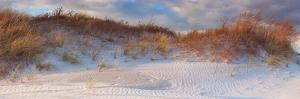 Dunes Light by Katherine Gendreau