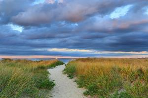 Jetties Beach Path by Katherine Gendreau