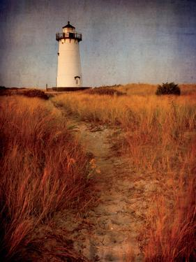 To the Harbor Light by Katherine Gendreau
