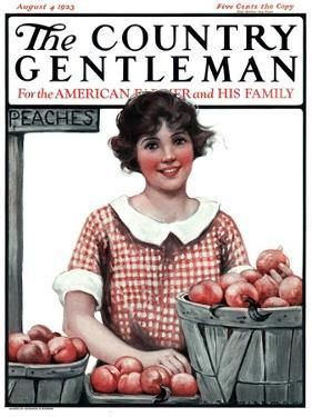 """Baskets of Peaches,"" Country Gentleman Cover, August 4, 1923 by Katherine R. Wireman"