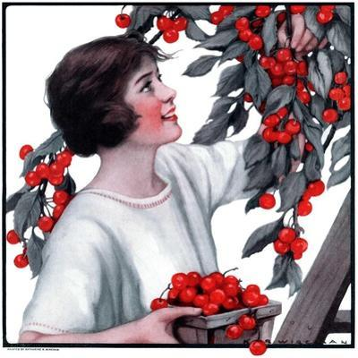 """Picking Pints of Cherries,""May 19, 1923"