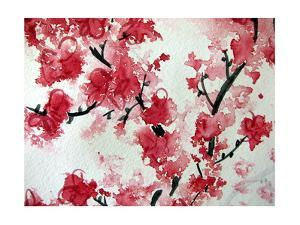 Cherry Blossom Watercolor On Paper by Kathie Nichols