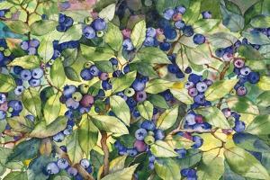 Blueberries by Kathleen Parr McKenna