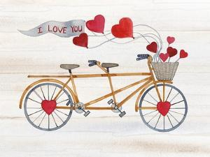 Rustic Valentine Bicycle by Kathleen Parr McKenna