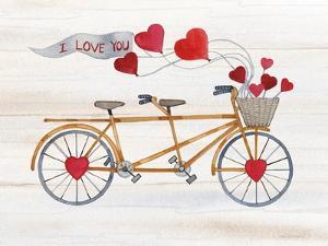 Rustic Valentine Bicycle by Kathleen Parr McKenna