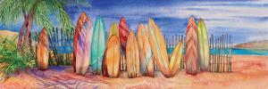 Surfboards by Kathleen Parr McKenna