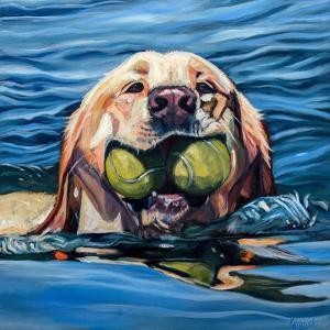 Fetch by Kathryn Wronski