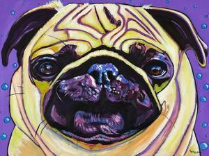 Purple Pug by Kathryn Wronski