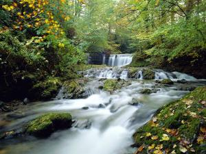 Stock Ghyll Beck, Ambleside, Lake District, Cumbria, England by Kathy Collins