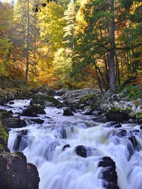 The River Braan, Dunkeld by Kathy Collins