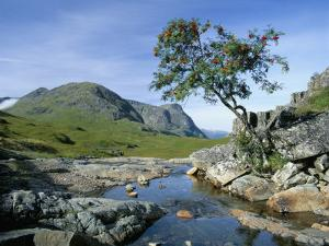 The Three Sisters of Glencoe, Highland Region, Scotland, United Kingdom by Kathy Collins