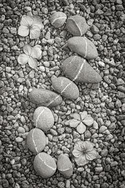 Curving Rocks I by Kathy Mahan