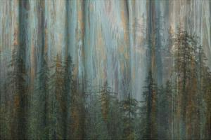 Forest I by Kathy Mahan