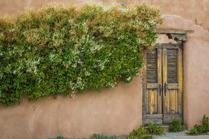 Gate II by Kathy Mahan