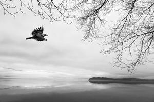 Seabeck Winter I by Kathy Mahan
